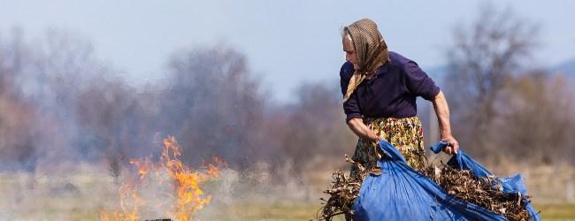 Чим небезпечний сезон спалювання листя?