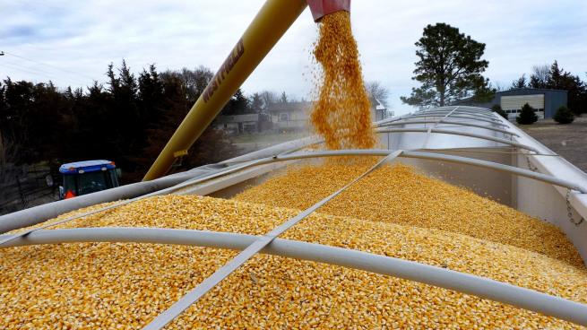 Перевезення зернових культур